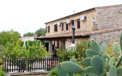 Finca Joana – typisch mallorquinische Finca bei Santa Margalida für bis zu 8 Personen